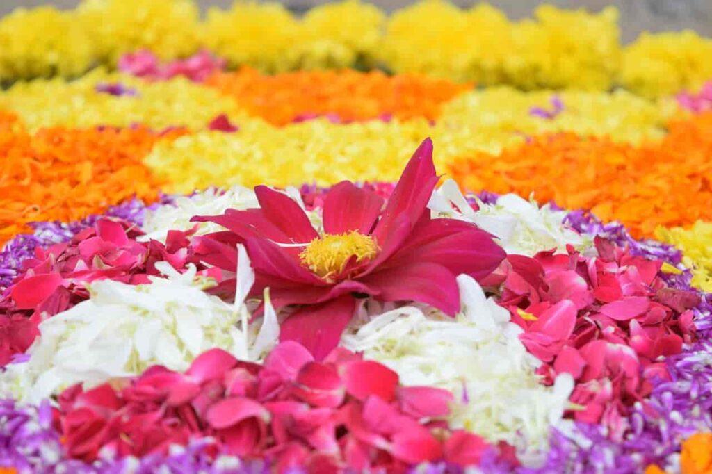 onam-kerala-festival