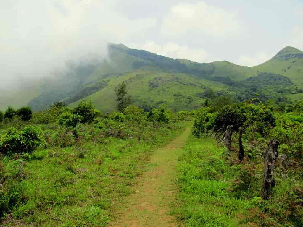 Tadiandamol-Trek-via-Chelavara-Falls