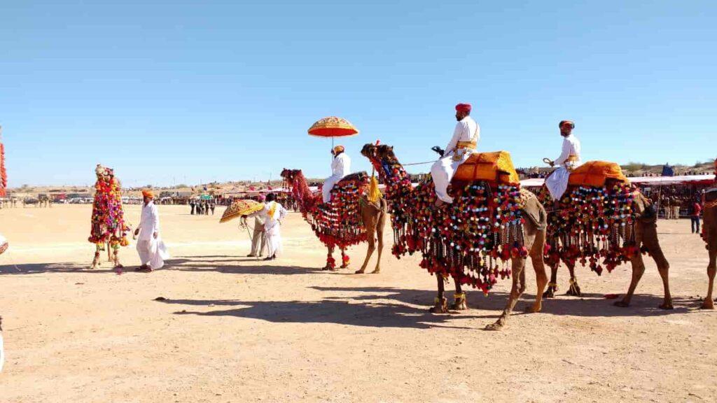 The International Camel Festival celebrates the Camel the 'The Ship of Desert'