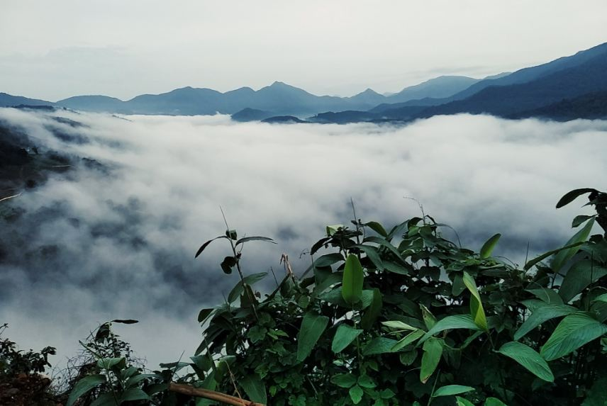 Best Time To Visit Idukki Tourist Places