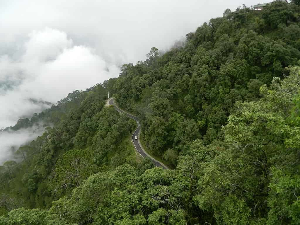 Lansdowne-the-town-flaunts-lush-green-forests-all-around