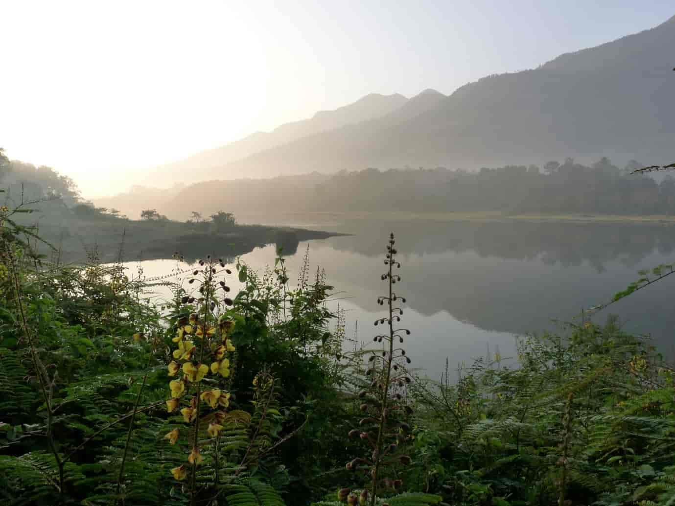 Malankara-Dam-forms-part-of-a-beautiful-landscape-and-the-main-reason-for-its-construction-is-irrigation