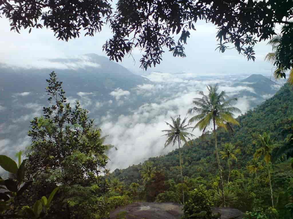 Nandukani-is-a-trekking-trail-a-picnic-spot-and-a-great-Idukki-Tourist-Place