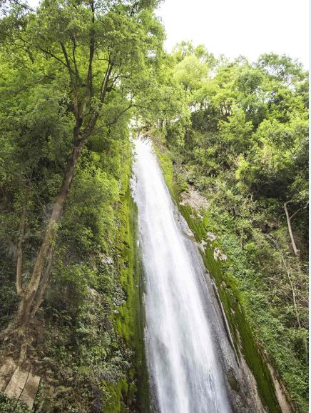 Tiger-Falls-is-a-sight-to-behold-as-they-cascade-down-from-a-height-of-312-feet-or-50-meters-is-one-of-the-best-places-to-visit-in-Dehradun