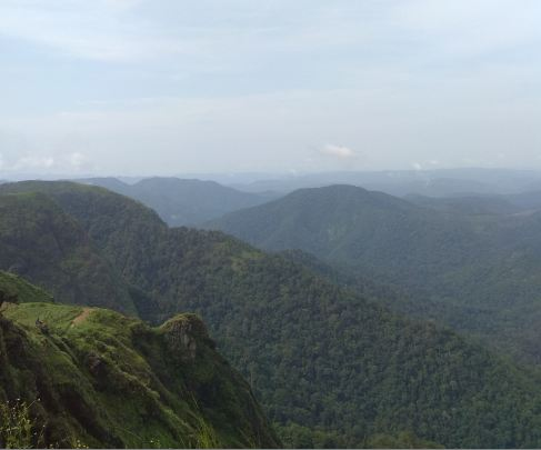 Vagamon-was-found-by-the-British-as-they-found-the-place-good-for-tea-plantations-and-today-this-paradise-finds-its-place-in-the-National-Geography-Travelers-top-50-places-to-visit-in-India