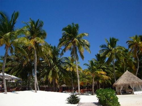 rangali-island