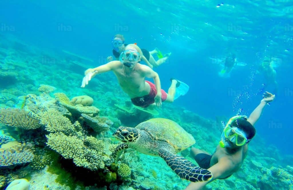 best-time-to-visit-the-maldives-and-enjoy-Snorkeling