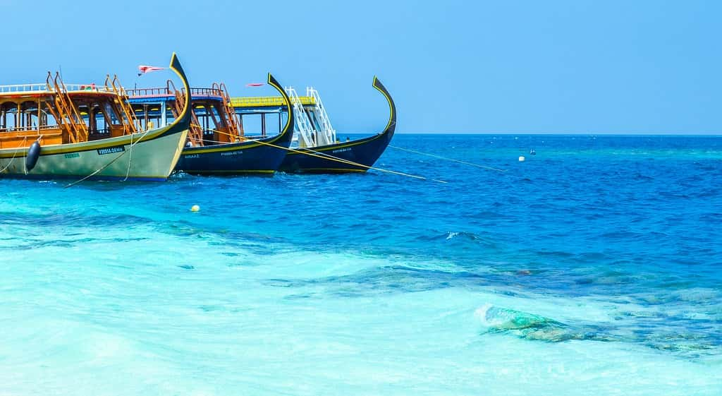 best-time-to-visit-the-maldives-and-enjoy-dhonis