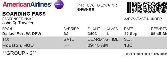 Sample flight Ticket Copy