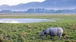 Kaziranga National Park world heritage sites in maharashtra india